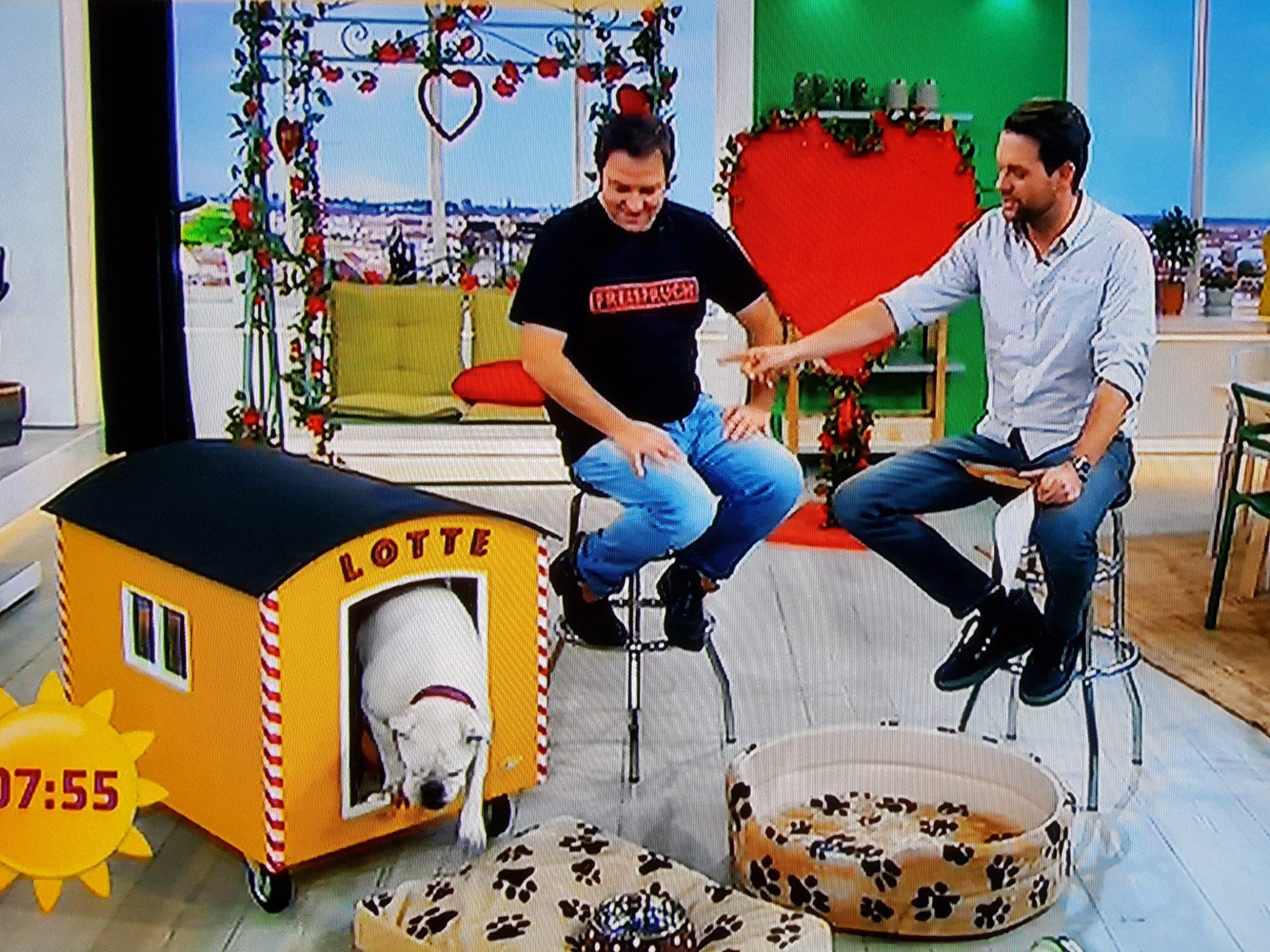 """Meine Hundehütte """"Peter"""" im SAT1 Frühstücksfernsehen"""